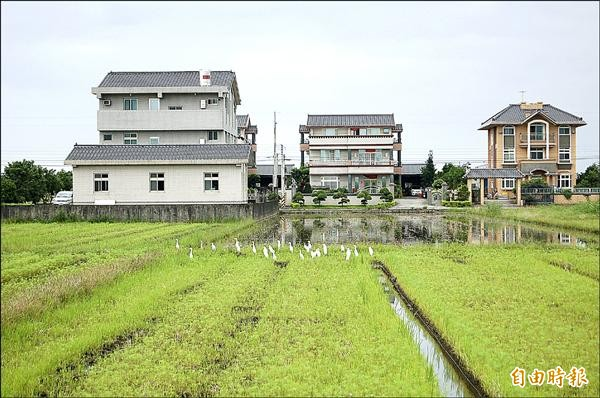 一度傳出卡關的「農業用地興建農舍辦法」今天將預告,圖為全國農舍問題最嚴重的宜蘭農舍。(資料照,記者游明金攝)
