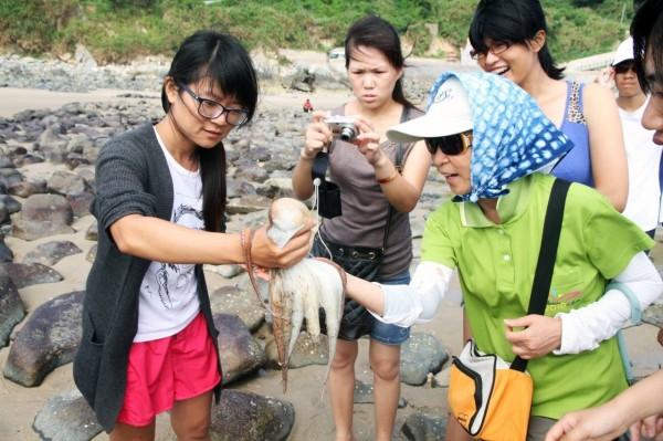 莒光海洋觀光年八月登場,有各式各樣海洋活動,圖為民眾近距離觀賞章魚。(莒光鄉公所提供)