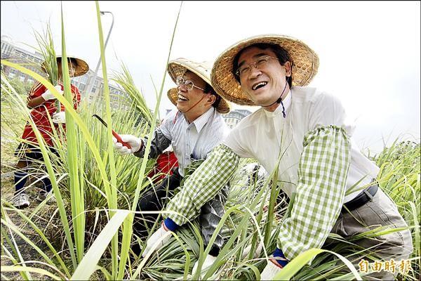 懷恩基金會副董事長黃鎮台(右一)、嘉大校長邱義源(右二)等人昨割香茅草,象徵計畫啟動。(記者王善嬿攝)