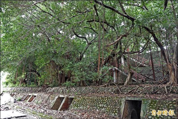 彰化高中校園內的防空洞保留完整。(記者劉曉欣攝)