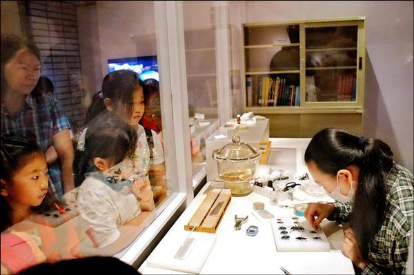 科博館舉辦昆蟲標本特展,讓民眾看到昆蟲標本製作過程。(科博館提供)