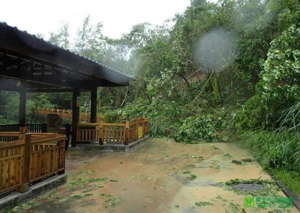 蘇迪勒風強雨驟,動物園內一片狼藉。(台北市立動物園)