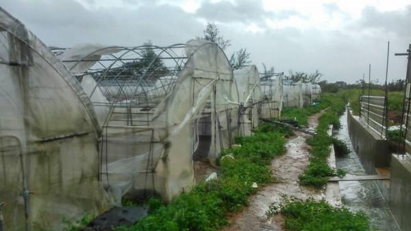 蘇迪勒來襲,農業設施損失嚴重。(農業局提供)