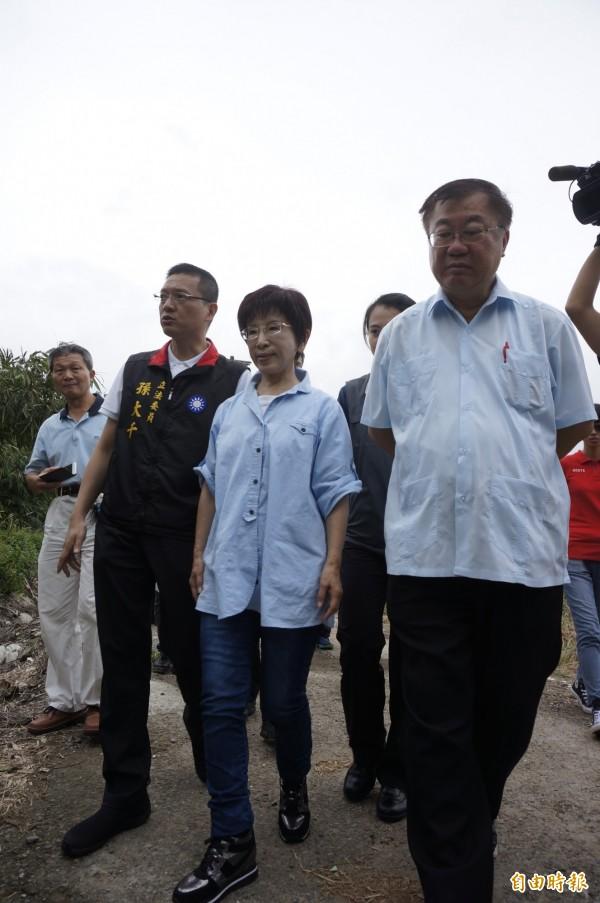 國民黨總統參選人洪秀柱訪視桃園市八德區「農仲萊」番茄農場。(記者林近攝)