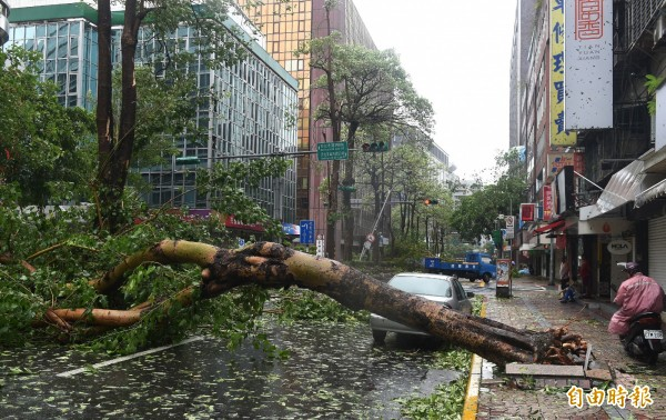 中颱蘇迪勒襲台,台北市民生東路路樹被強風連根拔起橫躺路中。(資料照,記者簡榮豐攝)