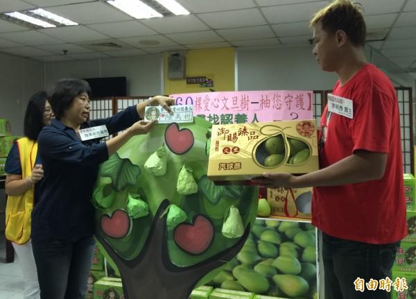 麻豆柚農李明彥(右)捐老欉文旦樹及文旦禮盒助創世。(記者蔡文居攝)