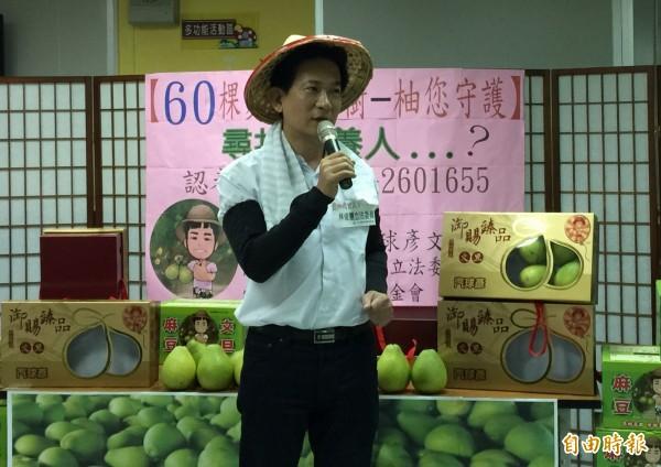 立法委員參選人林俊憲巧扮成柚農愛心代言。(記者蔡文居攝)