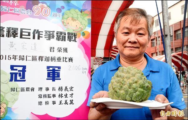 農民黃宏達以逾兩台斤的果重,勇奪今年的「釋迦王」。(記者吳俊鋒攝)