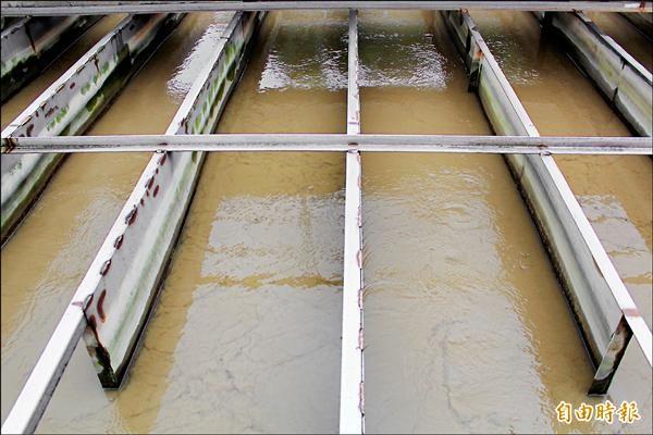 據觀測點資料顯示,上游雨量雖未達大雨程度,但南勢溪濁度就飆高到六千度。(記者鍾泓良攝)