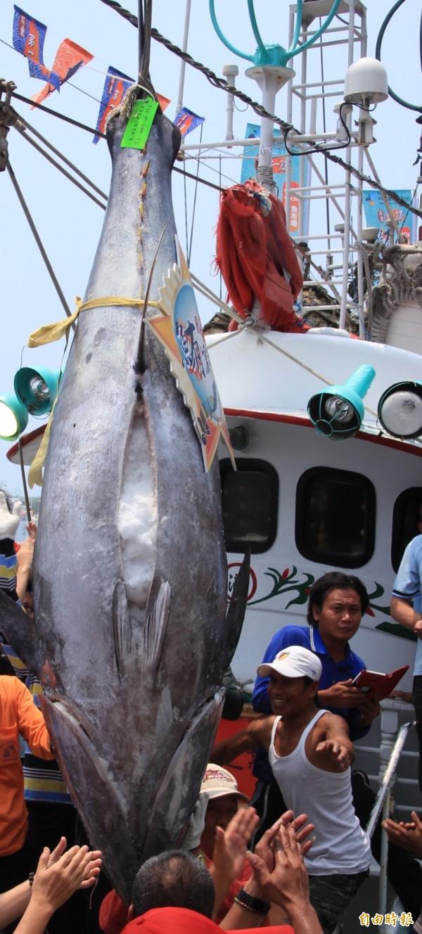 勞動部今表示,基於漁工作業型態特殊,雇主於出海作業及漁船靠岸期間本應妥適合理安排漁工膳宿條件。(資料照,記者陳彥廷攝)