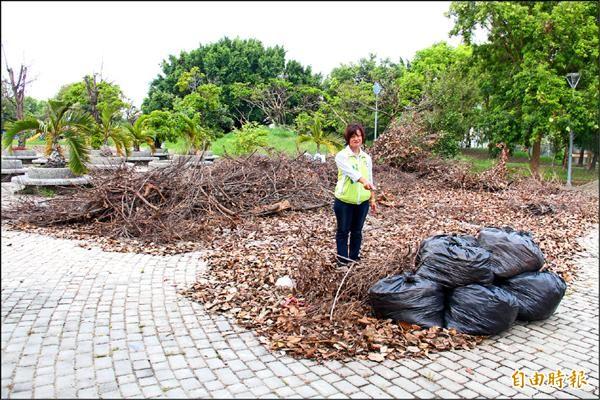 議員陳秋蓉指控市公所,放任南區公園髒亂,養護不力。(記者陳冠備攝)