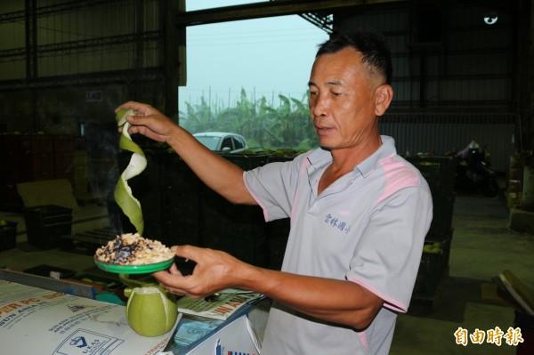 柚子文可製作成柚子蚊香,效果不差,味道清香。(記者詹士弘攝)