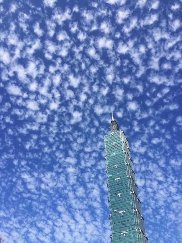台北今天下午的天空中出現一朵又一朵的爆米花雲,相當可愛。(圖由讀者提供)