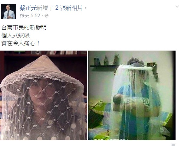 蔡正元昨天在臉書PO出一張女子頭戴蚊帳帽的照片,引起討論。(圖擷取自蔡正元臉書)