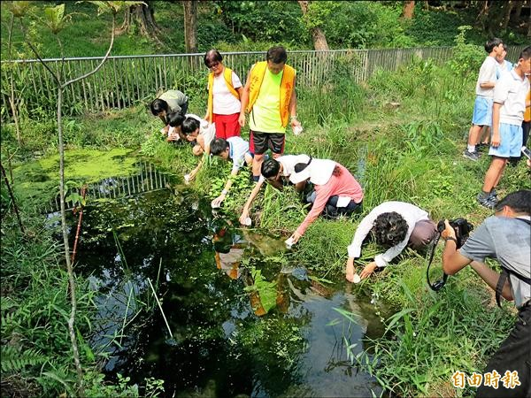 昨天首場的「火金姑入厝典禮」約野放三十隻黃緣螢幼蟲。(記者何世昌攝)