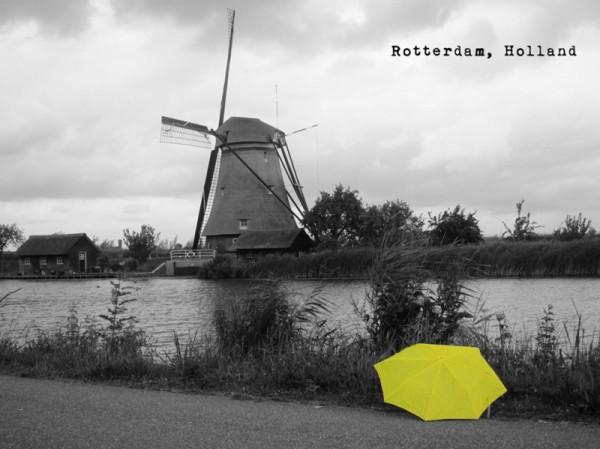 荷蘭鹿特丹。(圖擷自《在世界看見雨傘 The traveling umbrella》臉書專頁)