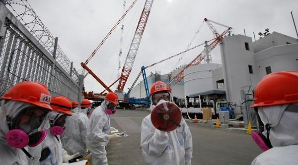 包含名古屋大學在內的研究團隊近日指出,第一核電廠內的2號核反應爐有逾70%的核燃料棒已經溶解,他們將進一步確認燃料是否已滲入核反應堆。(路透)