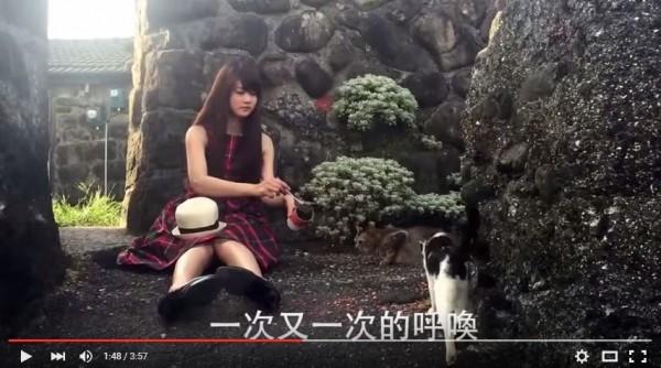 2016長榮空姐愛心年曆找來流浪貓一同合影,但流浪貓難以控制,讓拍攝過程困難重重。(翻攝自2016長榮空姐年曆拍攝花絮)