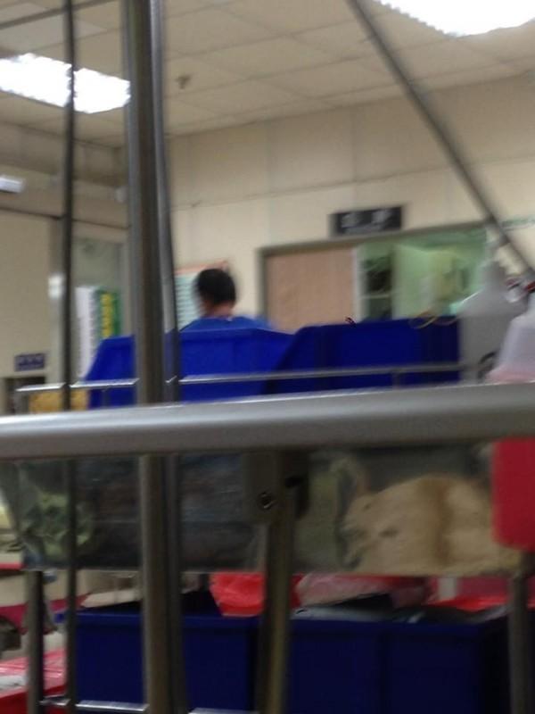 吳男(藍衣者)提著蛋糕想砸弟弟,卻害得急診室一片狼藉,並波及到醫療器材。(擷取自臉書)