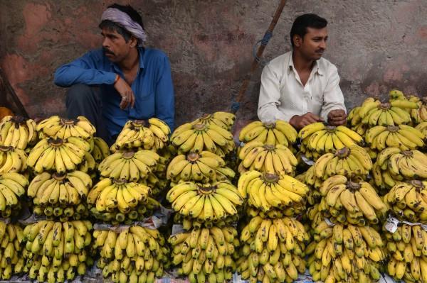 美國有專家發現香蕉含有一種化學物質,經改造過後可以有效對抗愛滋病、伊波拉等多類病毒。(法新社)