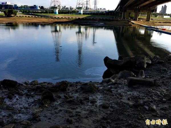 中油公司漏油污染基隆河流域,在麥帥一橋底下的河面上還見得到油漬。(記者趙新天攝)