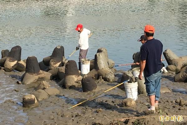 工人忙著在消波塊上塗水泥,掩蓋油污,中油公司除污手法令人質疑。(記者趙新天攝)