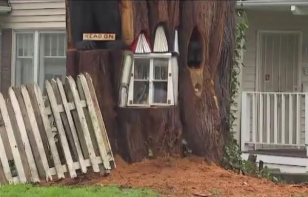 百年老樹枯死後,藝術家雕成圖書館。 (圖取自YouTube)