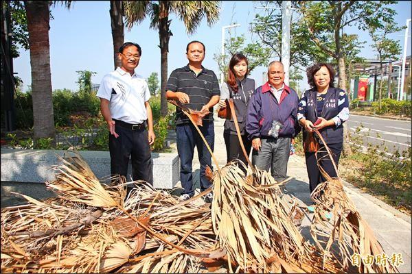 藍營議員前往勘查故宮南院周邊,發現太子大道上有不少枯葉散落一地。(記者林宜樟攝)
