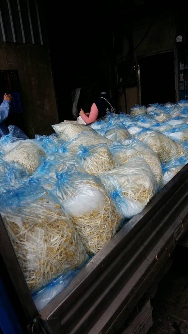 雲林地檢署會同雲林衛生局查扣非法使用低亞硫酸鈉清洗的豆芽菜。(地檢署提供)