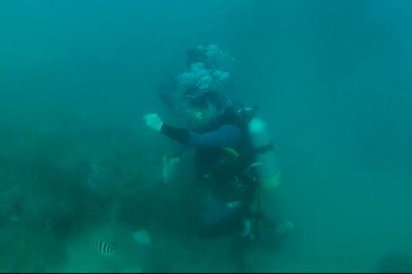 不肖潛客魚線釣魚被拍下。(記者蔡宗憲翻攝)