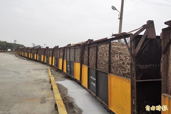 糖廠開工,載甘蔗的「五分仔車」再度行駛糖鐵上。(記者廖淑玲攝)