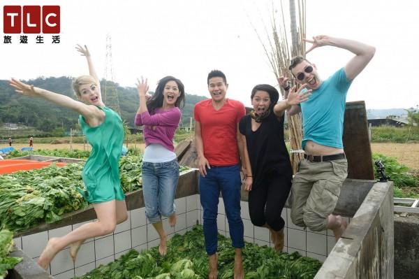 全新一季《瘋台灣》開拍,Janet帶領世界各地部落客,到客庄苗栗體驗踩福菜。(圖由節目提供)