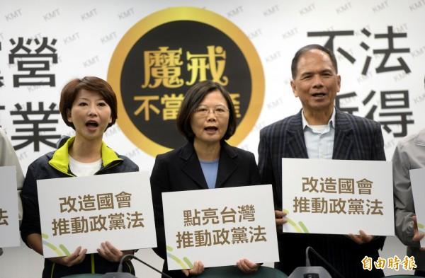 民進黨力推政黨法,制定不當黨產處理條例。(資料照,記者林正坤攝)