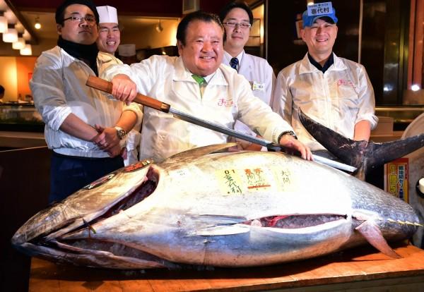日本知名的築地市場年底將要遷建,今天(5日)舉行舊市場最後一次的新年鮪魚競標活動。(法新社)