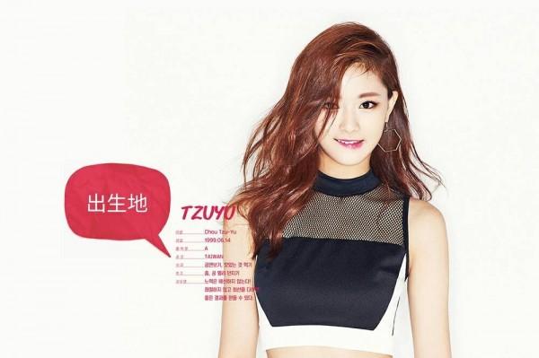 韓團「TWICE」台灣籍成員周子瑜,因為舉國旗、自稱來自台灣,遭台籍藝人黃安及中國網友視為「台獨」窮追猛打。(翻攝自JYP娛樂官網)