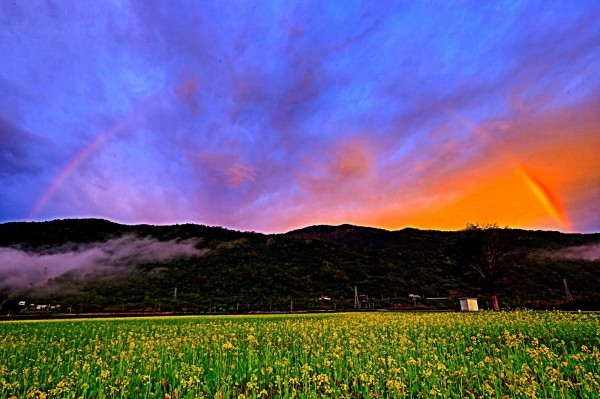 網友今天早上6點多拍下,花東縱谷真的出現彩虹。(網友提供)