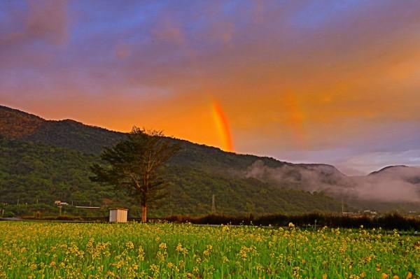 花東縱谷今早出現彩虹。(網友提供)