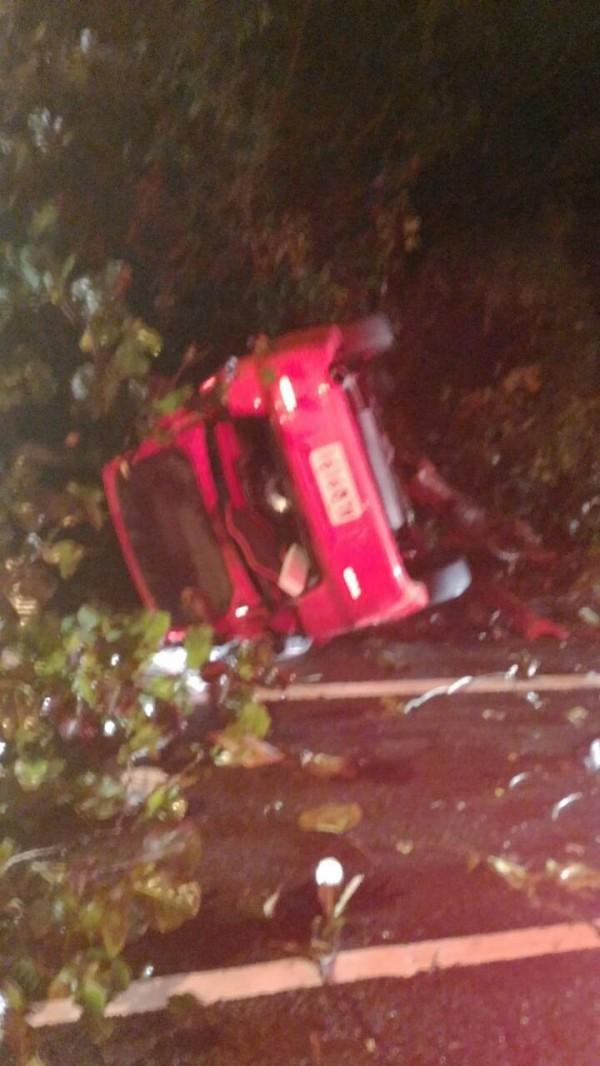 男子開車撞路樹,救回一命。(記者蔡政岷翻攝)