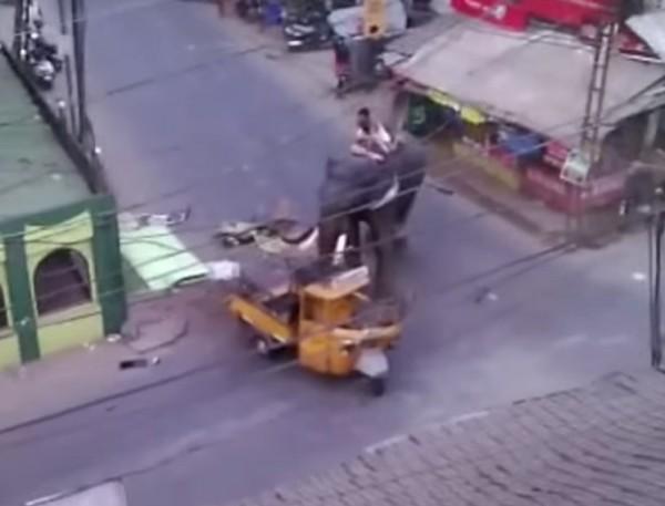 大象用象鼻抓起這台嘟嘟車猛力重摔地上,車子被牠弄到支離破碎。(圖擷自YouTube/IndianExpressOnline)