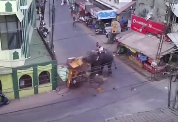 日前印度西南部一隻大象在街上突然抓狂,竟用象鼻把街頭載客的嘟嘟車抓起來狂甩,砸到車子整個稀巴爛。(圖擷自YouTube/IndianExpressOnline)