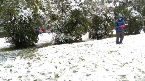 民眾在陽明山雪地玩雪(警方提供)