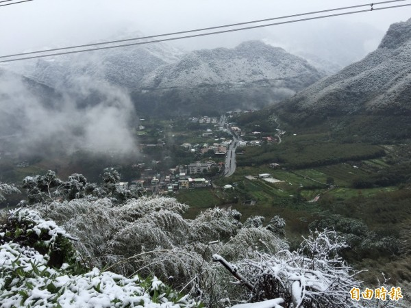 拉拉山遭白雪覆蓋,桃園巴崚、光華、高義及三光等4所國小明停班停課。(記者李容萍攝)