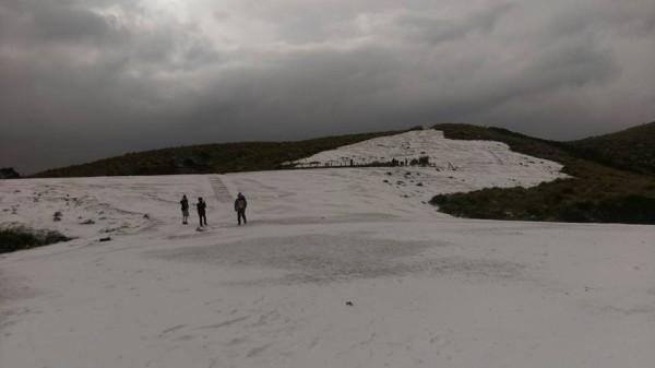 平常本是一片草原的擎天崗竟變成大滑雪場,讓網友們驚呼連連。(圖擷自民眾臉書)