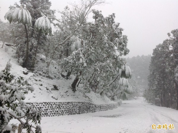 拉拉山遭白雪覆蓋,桃園巴崚、光華及高義等3所國小明停班停課。(記者李容萍攝)
