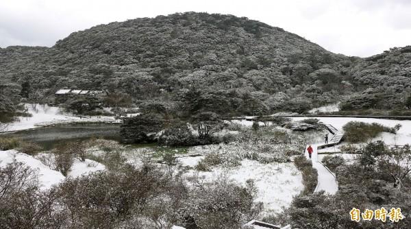 大屯山凌晨降下大雪,變成一片銀白世界,吸引民眾上山賞雪。(記者方賓照攝)