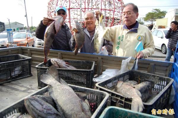 最強寒流造成台南市濱海北門、七股、將軍、學甲等地養殖漁業災情慘重,石斑魚也被凍死。(記者楊金城攝)