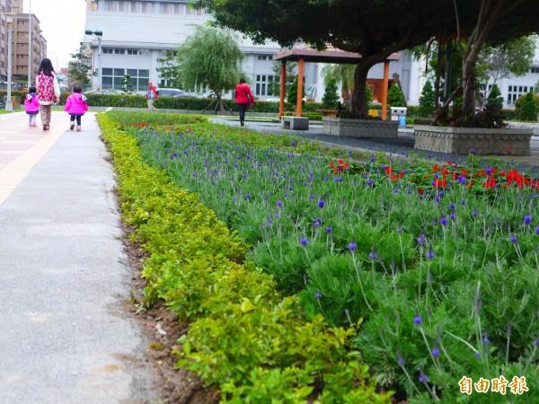 綠美化環境景觀處、蘆洲區公所在柳堤公園規劃面積168.3平方公尺區塊種植香草。(記者李雅雯攝)