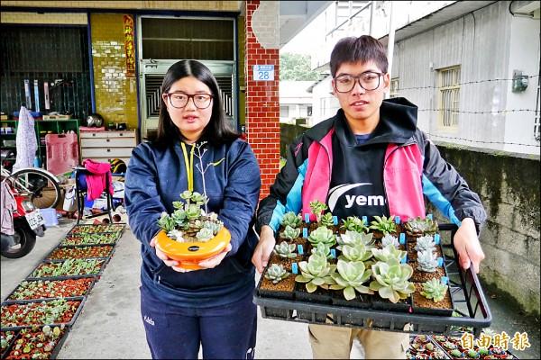 就讀彰化中州科技大學景觀系的蘇子賢(右)及林瑤慈,利用今年寒假期間返鄉創業,引進時下最夯的療癒系多肉植物,意外在花蓮闖出名號。(記者王峻祺攝)