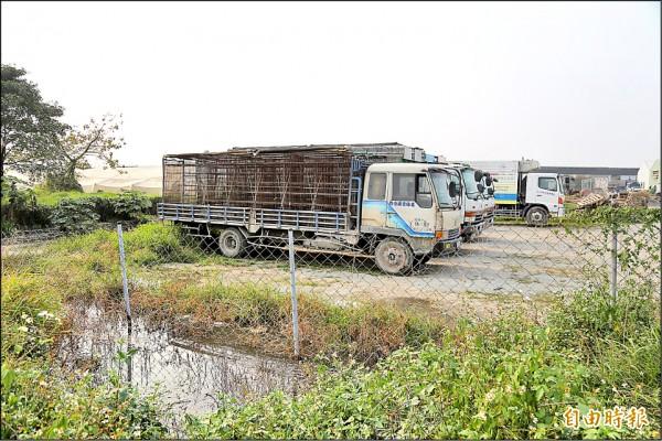 民眾舉報坤翰公司長期將屠宰廠廢水直接排進大排,廠房附近臭氣沖天。(記者邱芷柔攝)