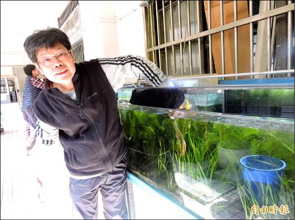 裕民國小老師鍾宸瑞帶著學生復育台灣原生魚類。(記者何玉華攝)